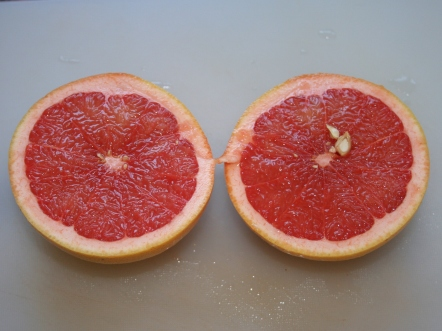 Pink_Grapefruit_2011-1